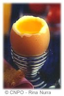 Oeuf protéines minéraux vitamines cholestérol poule
