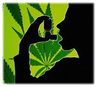 Bientôt, le cannabis en spray!